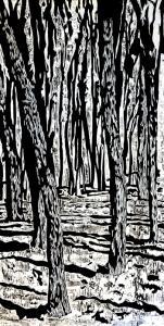 Klee-Atlin.350