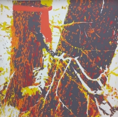 Karen Klee-Atlin, Blazed Tree - Gray V, (2018). Reductive linocut on paper, 20 x 20 in.